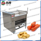 红薯专用清洗去泥设备  厂家直销不锈钢毛辊机洗涤机器