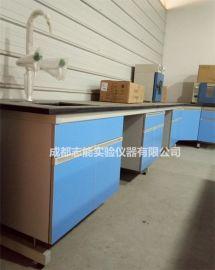成都实验台水槽台试剂架定制 双流钢木实验操作台