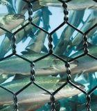 聚酯海水養殖網@上海聚酯海水養殖網@海水養殖網廠家