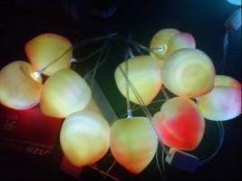 LED水果灯串 (GWD-SGD008)