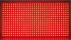 金鸿发单元板-单红(P10)