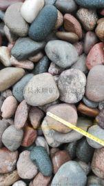 天然鹅卵石生产厂家 杂色砾石低价供应