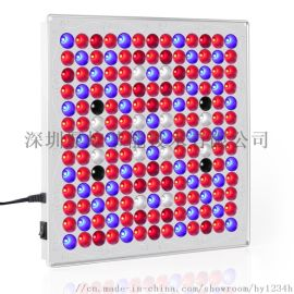 LED温室育苗内置面板灯