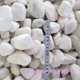 雪花白石子 透水地坪白石米 白色鹅卵石 园艺石子