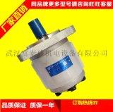 CBQTL-F563/F416/F410-AFH齿轮泵