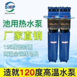 池用热水泵-热水池潜水泵-耐高温潜水泵