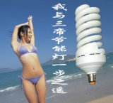 24v節能燈 24v球泡燈