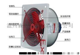 能耗低CBF防爆轴流风机