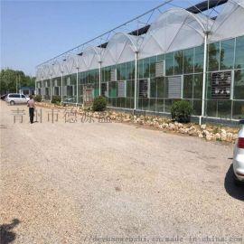 蔬菜薄膜连栋温室大棚 大型智能薄膜温室 德源温室