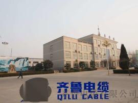 供應控制KVV-500V 2*4 齊魯電纜