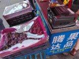 东莞水果网
