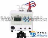 DL-6000型智慧雙路恆流大氣採樣器青島動力偉業