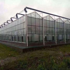 玻璃温室大棚 温室大棚骨架生产安装施工