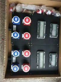 BXX51-4/K工程塑料材防水防尘防腐质检修箱