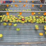 鑫富供應,蘋果清洗機,蔬菜清洗機,菠菜清洗機