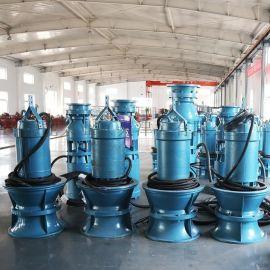 农田灌溉临时取水雪橇式轴流泵