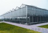 金盟小妙招:玻璃温室的保养