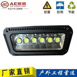 AE照明AE-SDD-02防水投光灯,高杆射灯,led遂道