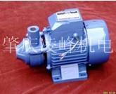 高温锅炉热水泵