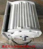 新疆地區3kw離心變槳距風力發電機3000w小型併網風力發電機組
