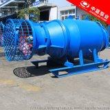潛水泵 大功率潛水軸流泵 潛水泵廠家