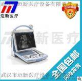 邁瑞DP-10全數位攜帶型超聲診斷系統