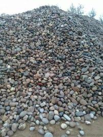 山西太原5-8公分天然鹅卵石厂家 太原鹅卵石批发