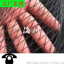 聚乙烯漁網攔網網片拖網聚乙烯線養殖網