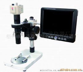 10B迷你视频显微镜