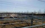 供應連棟溫室骨架跨度12米熱鍍鋅大棚骨架