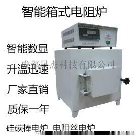 成都晟杰箱式电阻炉4-10