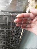 围栏网圈玉米网养殖网 不锈钢电焊网现货供应