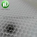 六角蜂窝 斜管填料 pp聚丙烯生物填料