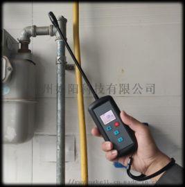 手持式燃气检测仪DX200系列