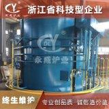 长兴永成井式液体渗碳炉 小型模具气体渗碳炉