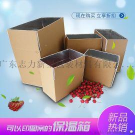 保温保鲜箱 冷藏铝箔包装泡沫箱 收纳折叠运输箱