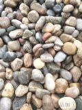 新乡1-3公分河卵石   永顺变压器鹅卵石批发