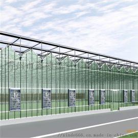 新型阳光板温室供应 智能阳光板温室 阳光板温室大棚