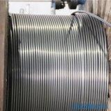 专业生产在线固溶退火软态不锈钢盘管 304不锈钢盘管 厂家直销 价格低廉