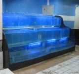 广州海鲜酒楼海鲜池/广州石夏路哪里定做饭店
