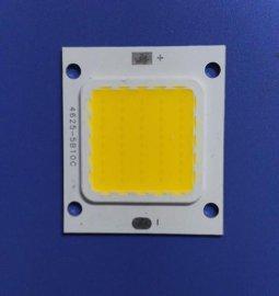 隆重推出新款集成COB光源 20W集成COB光源 欢迎咨询与订购