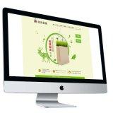 網頁設計 專業定製網站建站網路官網建設製作高端展示公司形象