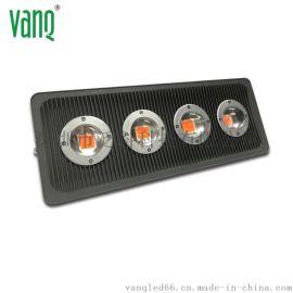 200W全光谱可定制光谱LED大棚补光灯
