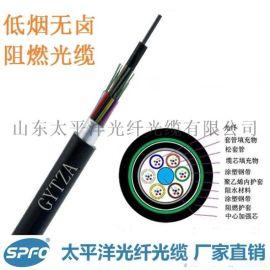 太平洋 GYTZA-6B1 6芯单模 室外阻燃光缆