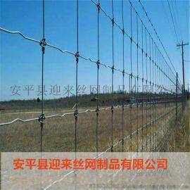直销牛栏网,镀锌草原网,养殖围栏网