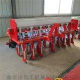 广安家用玉米播种机 小型玉米播种机厂家