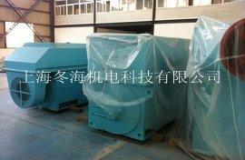 6KV高压稀土永磁电机 (TYX4505-4-710KW)