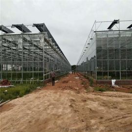 厂家直销智能温室 玻璃大棚 蔬菜大棚