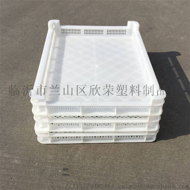 塑料单冻器冷冻筐晾晒烘干盘冷库速冻浅筐托盘