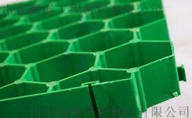潍坊平口加强型植草格/厂家质量保证